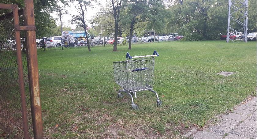 Handel i usługi, Porzucony wózek swojego naturalnego środowiska - zdjęcie, fotografia