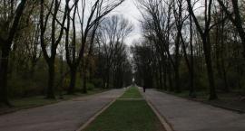 CBA sprawdzi sprzedaż fragmentu Parku Skaryszewskiego