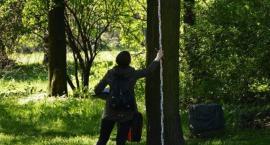 Arboryści w Parku Skaryszewskim